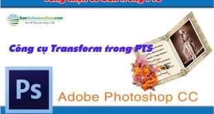 bt transform