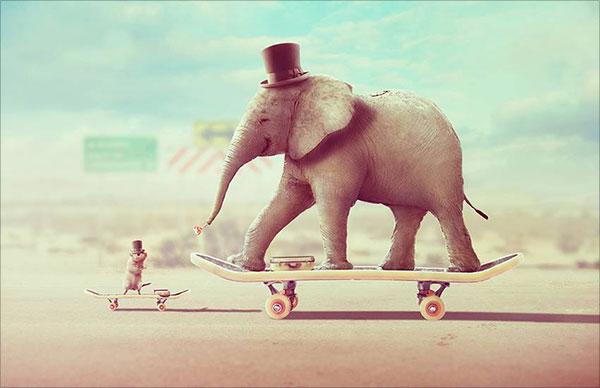 Siêu thực-Động vật-Ảnh-Thao tác-Với-10-Ảnh-trong-Adobe-Photoshop
