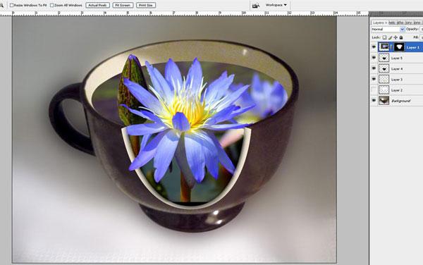 Tạo một bông hoa súng trong một hiệu ứng cốc trong Photoshop 25