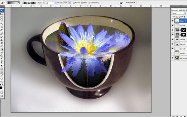 Tạo một bông hoa súng trong một hiệu ứng cốc trong Photoshop 33