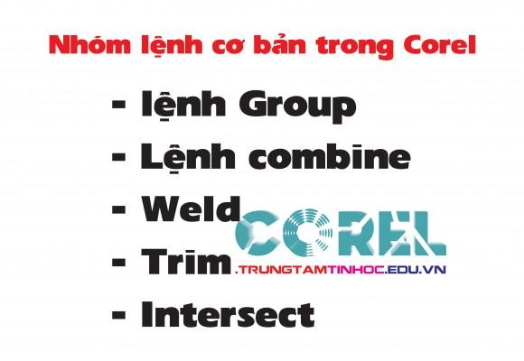 Nhóm lệnh cơ bản trong Corel
