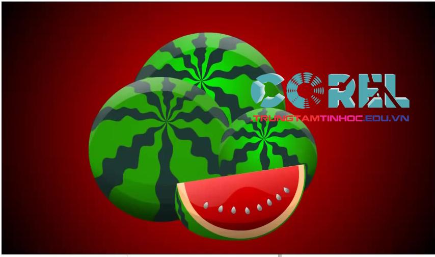 vẽ quả dưa hấu bằng corel